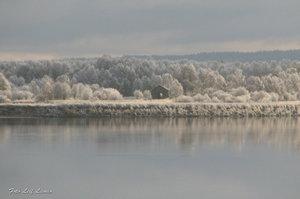 Frosttäckt landskap