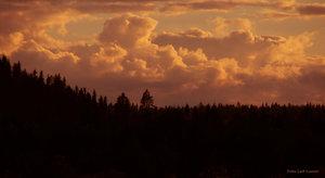 Skymningshimmel Hedenäset