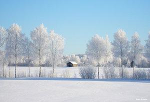 Vintermotiv