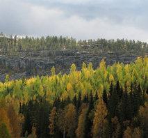 Tornedalen Luppioberget
