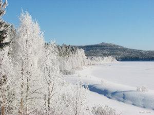 Rimfrostbeklätt landskap