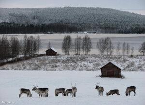 Kvällsbild Tornedalen Armasjärvi